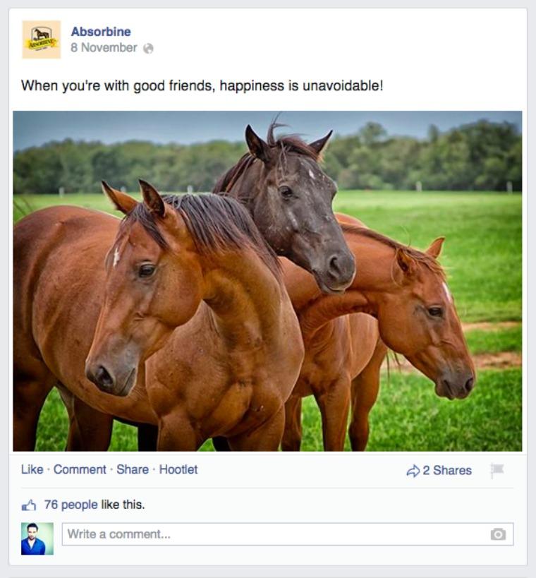 absorbine horses fb