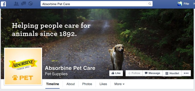 fb dog forest