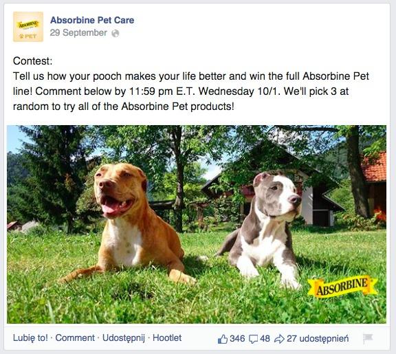 three dogs absorbine