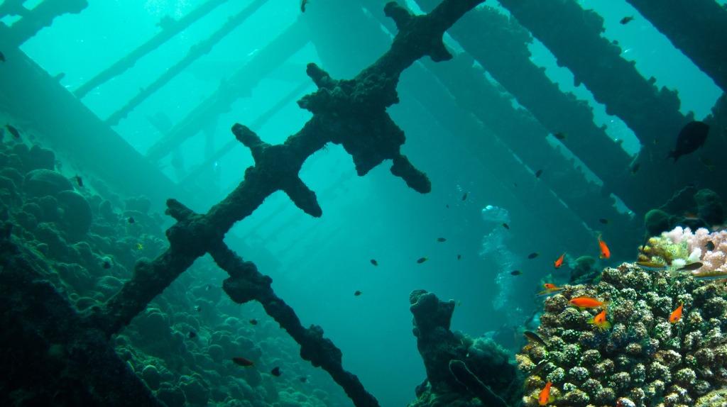 Foap-Wreck_diving