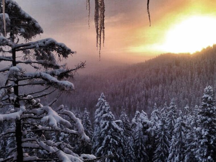 Foap-Winter_has_landed
