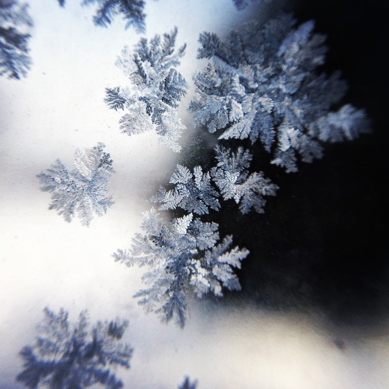 Foap-Light_behind_frosted_windows_@CARLYRICKENBACHER_Carly.Richenbacher