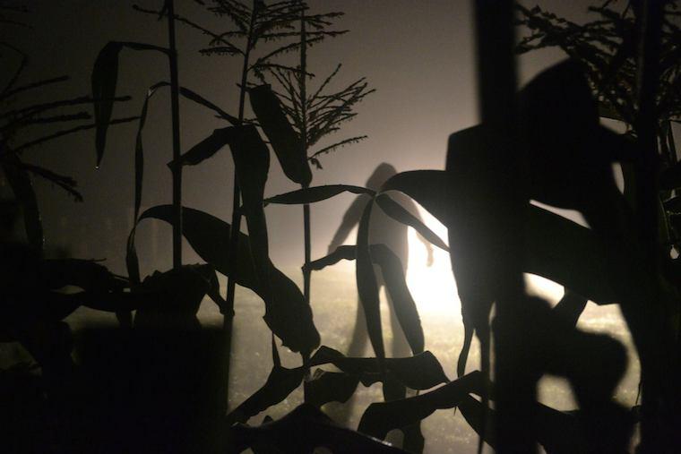 Foap-alien_in_the_cornfield_@STORMCHASERD_Dan.Tournay