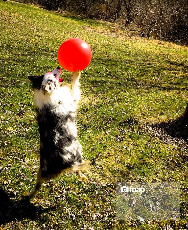 Foap-Balloon_Jump-2w