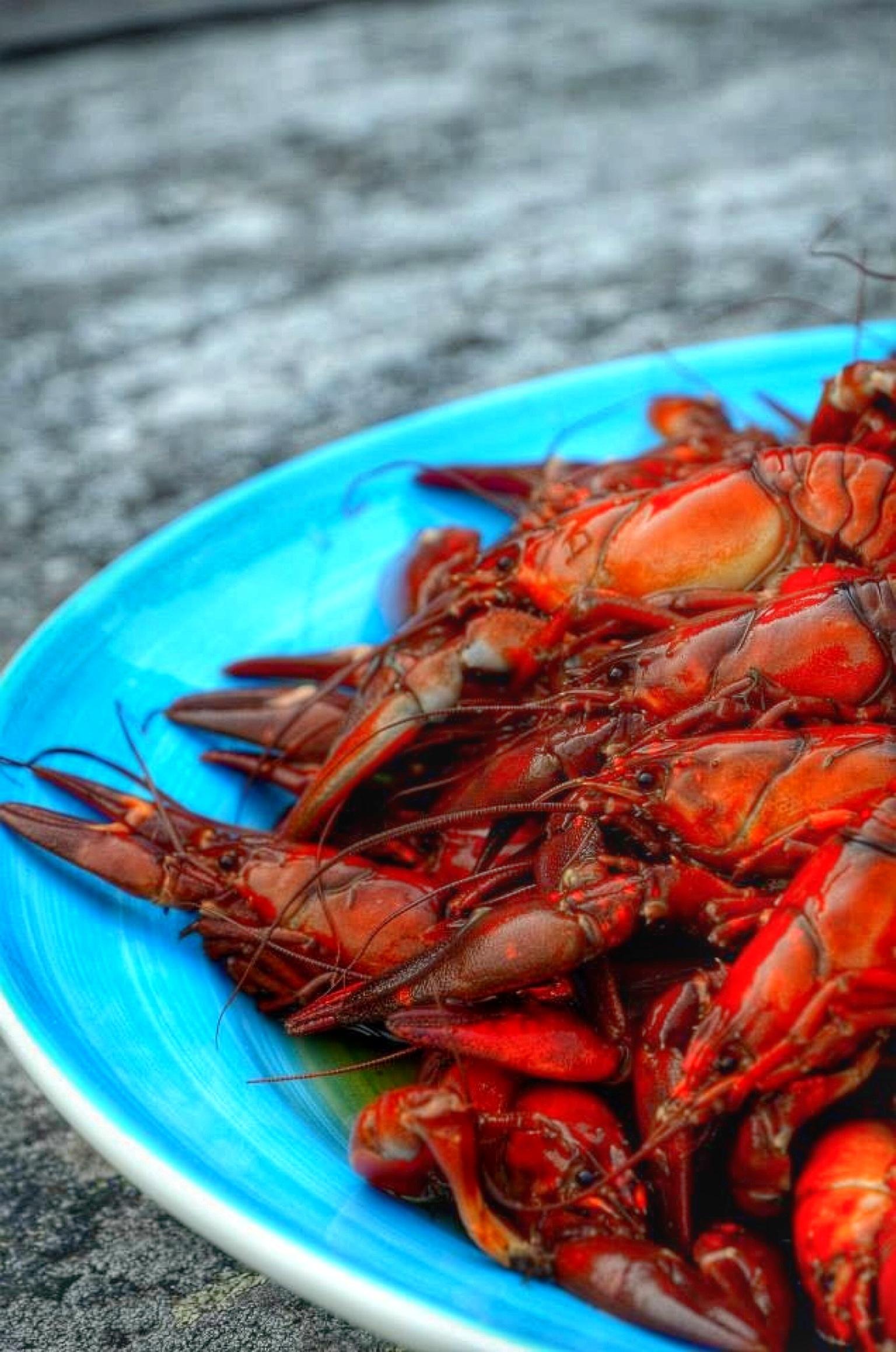 Foap-Crayfish