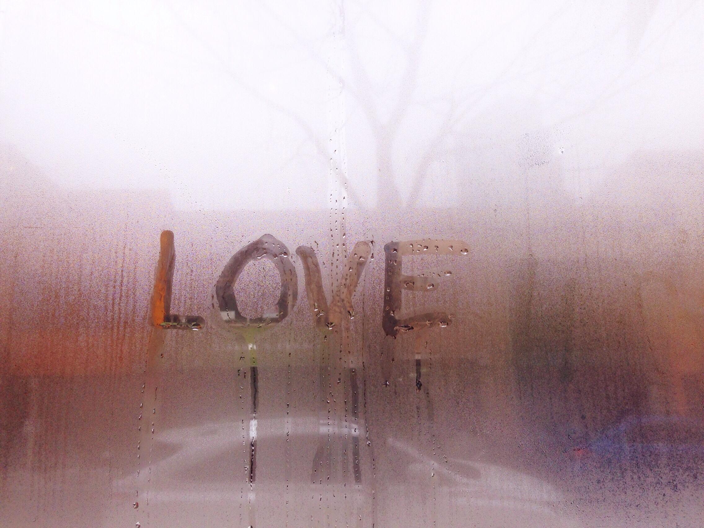 Foap-Early_Morning_Fog