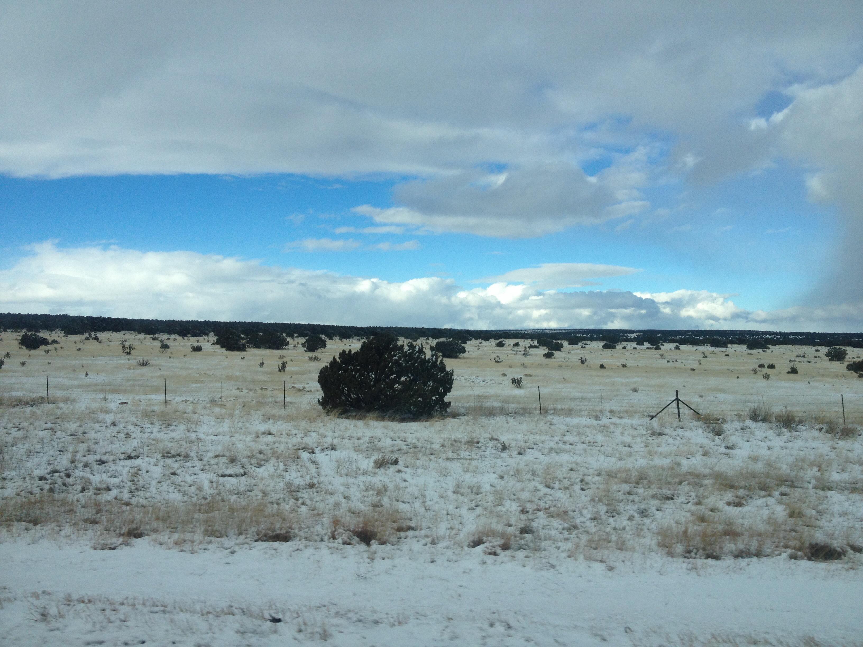Foap-Snowy_desert