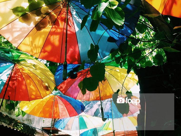Foap-_Umbrellas_Roof_