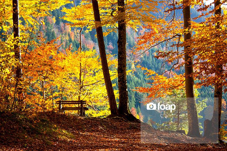 Foap-Autumn_in_Bavaria_