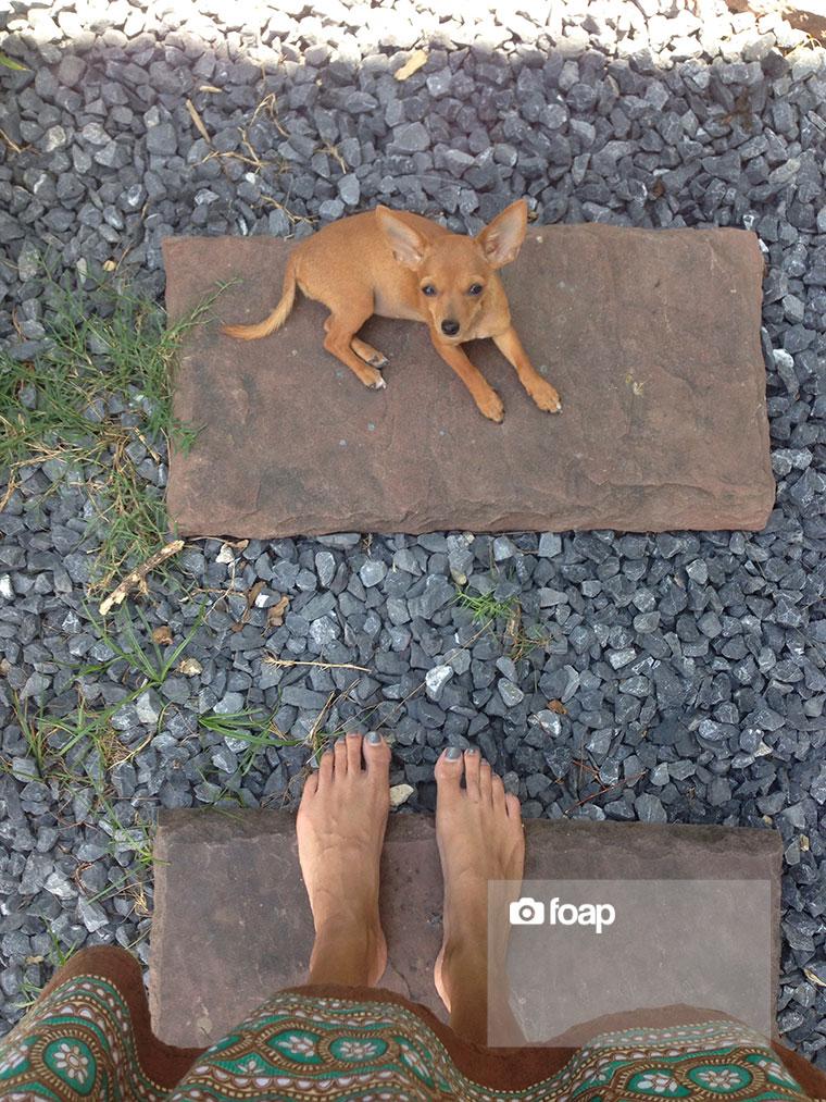 Foap-Foot_view-2