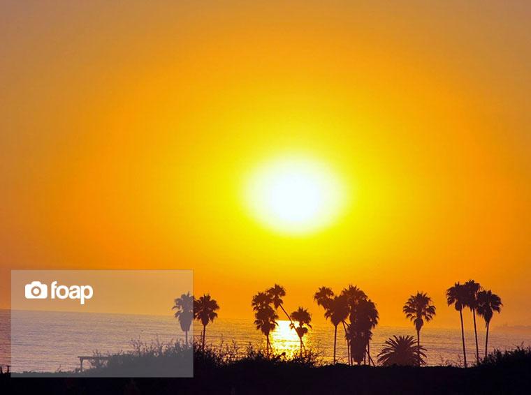 Foap-Pacific_Coast_Highway