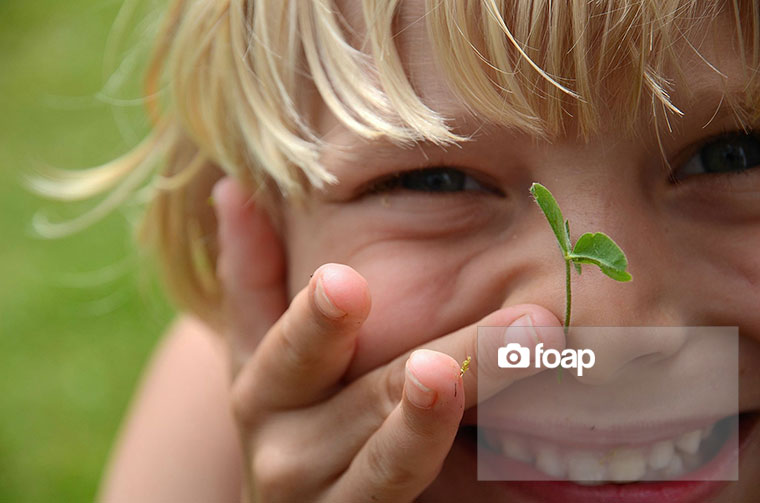 Foap-Spring-2
