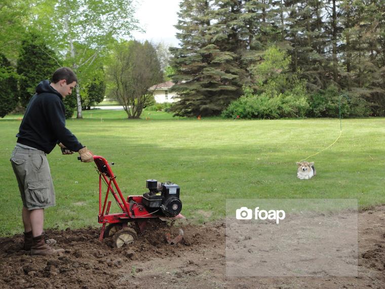 Foap-gardening (1) copy