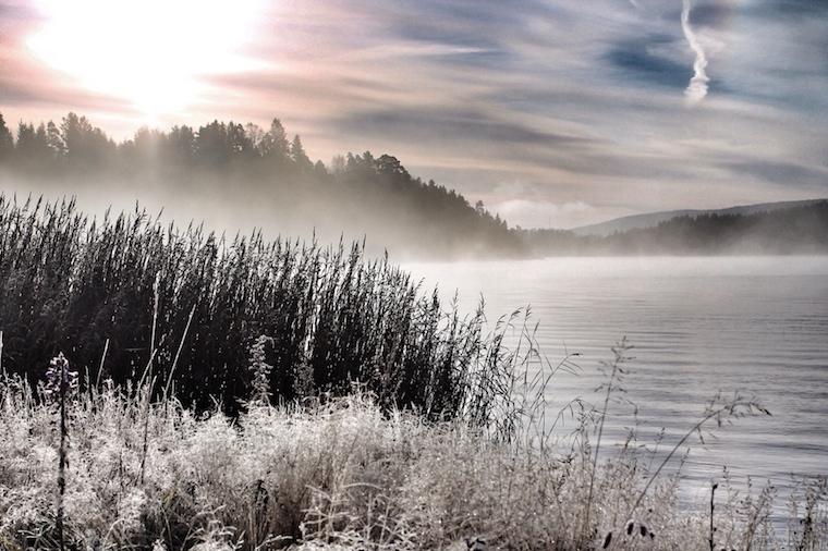 Foap-Early_morning