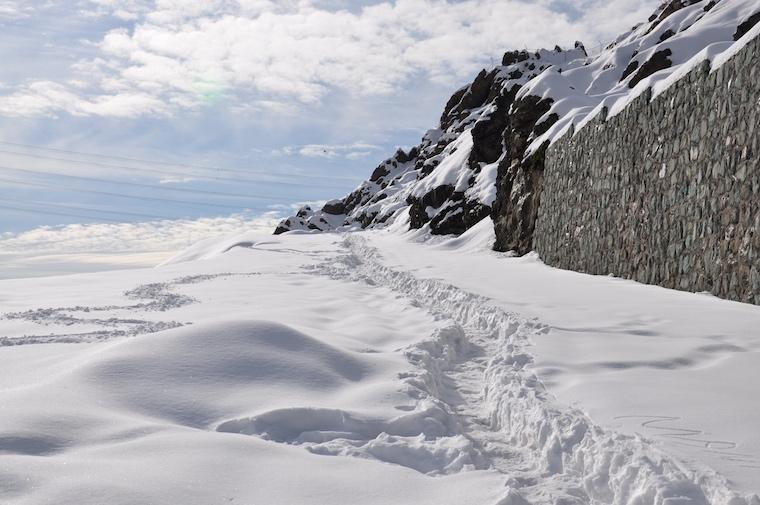 Foap-Let_it_snow