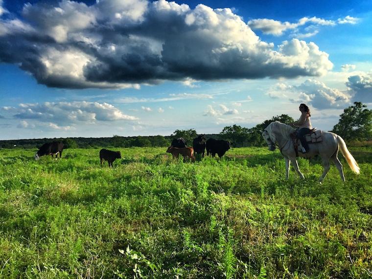 Foap-Texas_Afternoon