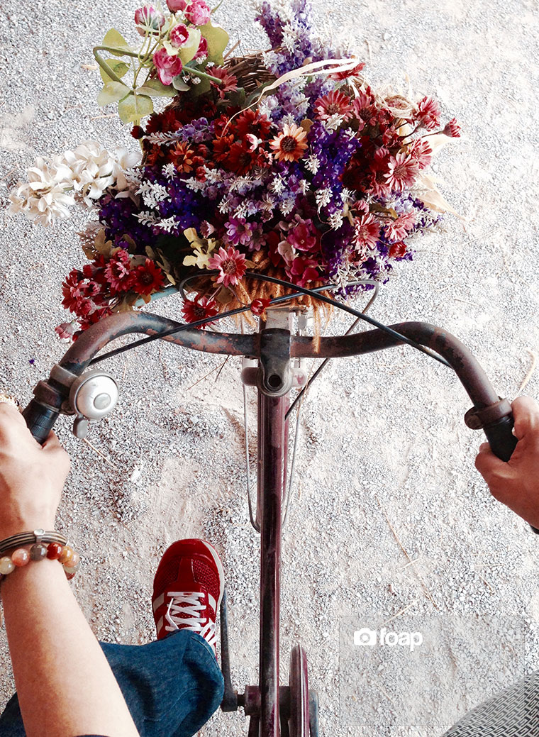 Foap-Bike_of_Love