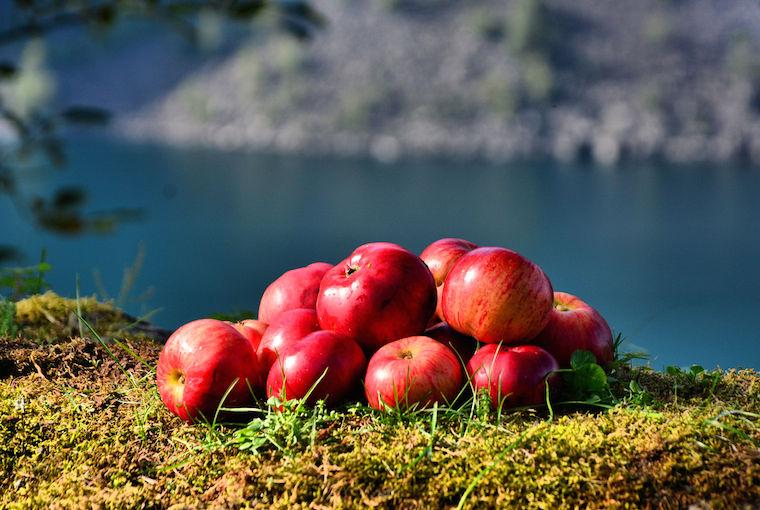 Foap-Norwegian_apples
