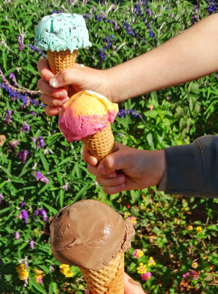 Team work ice cream