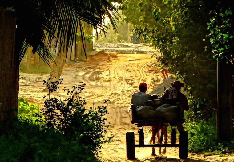 Rural living in Brazil