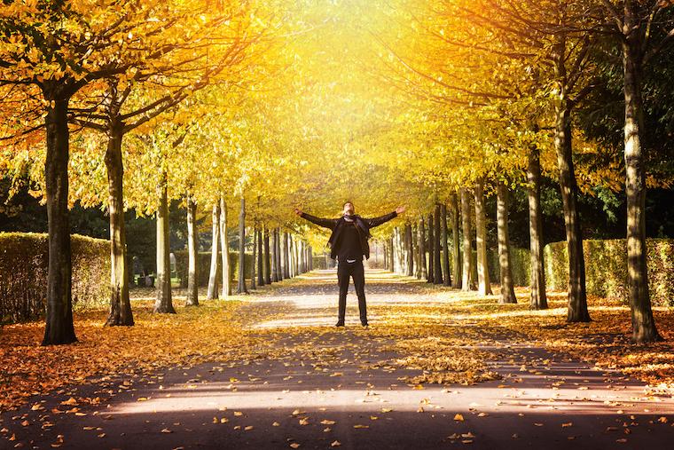 Fall Beutiful