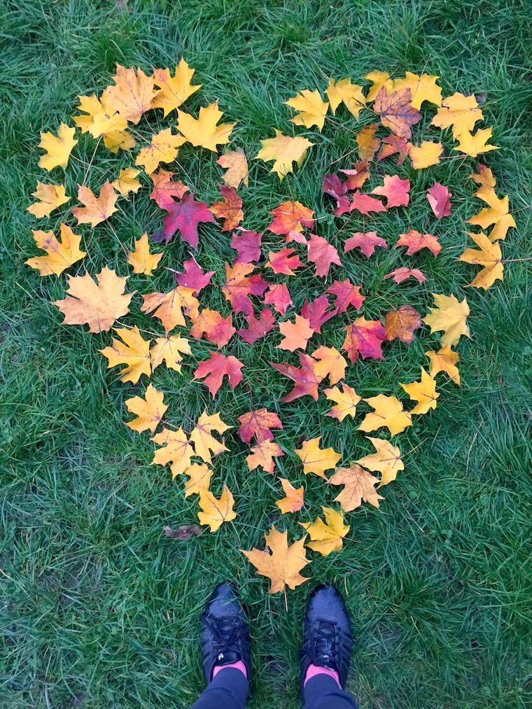 Fall heart leafs