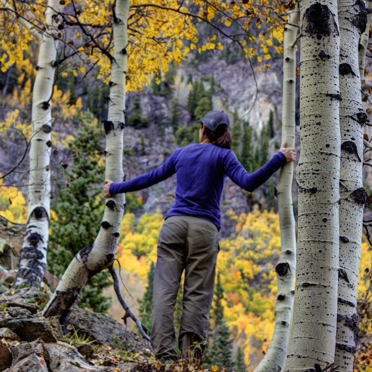 Fall Exploring