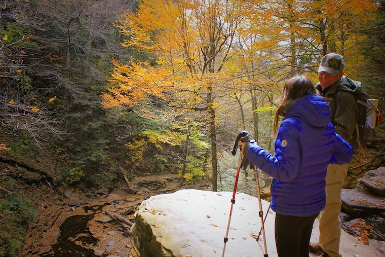 Foap-Fall_scenery
