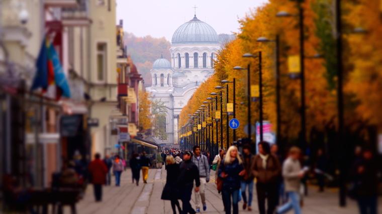 Fall in Kaunas city