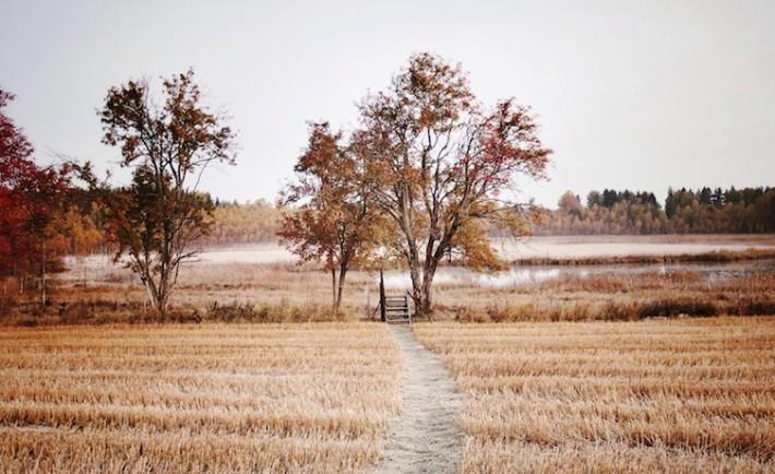 Visit Skåne Winter Foap Mission