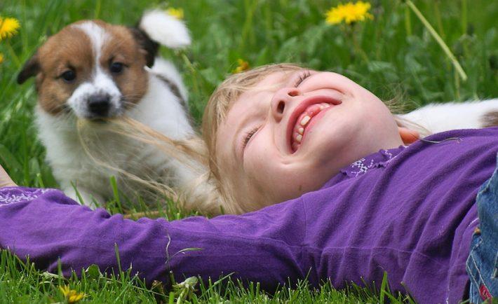 Purina cutest pet contest